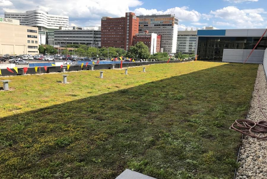 New Chicago Blackhawks facility meets sustainability goals with green roof
