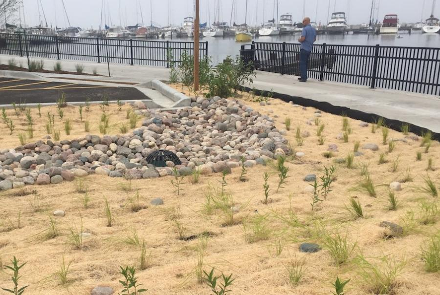 Bioswales in Milwaukee combat storm water runoff pollution