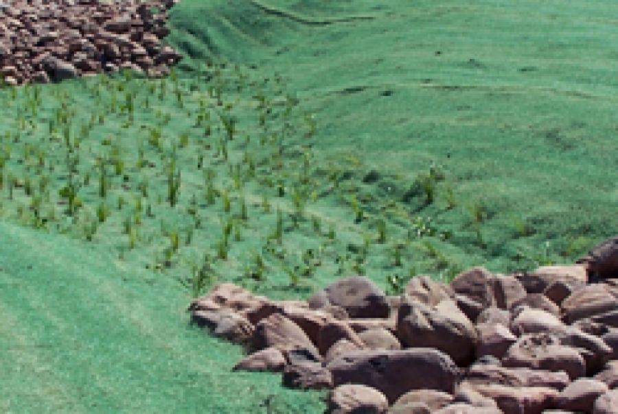 erosion control blankets, water erosion, american excelsior, curlex