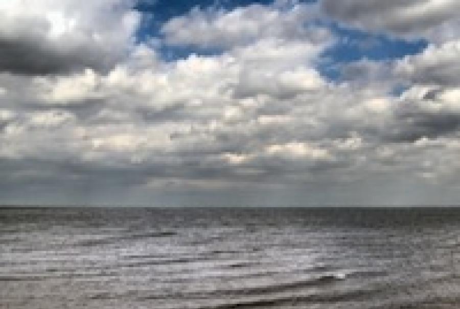 Rotary International Great Lakes water quality Goose Island Evanston