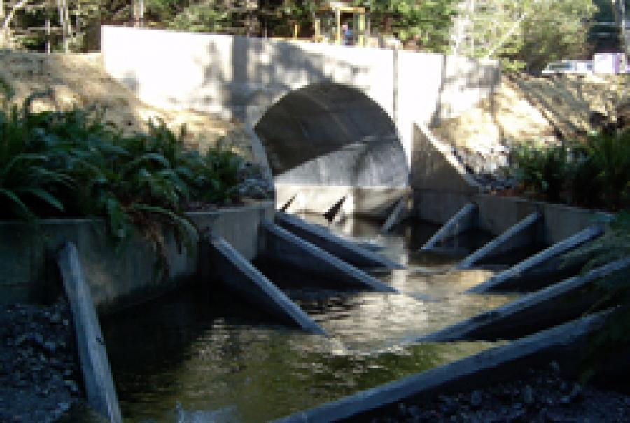 Fish Passage Solutions