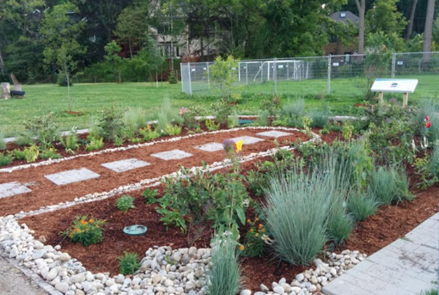 Rain garden at Ontario school adds aesthetic & environmental benefits