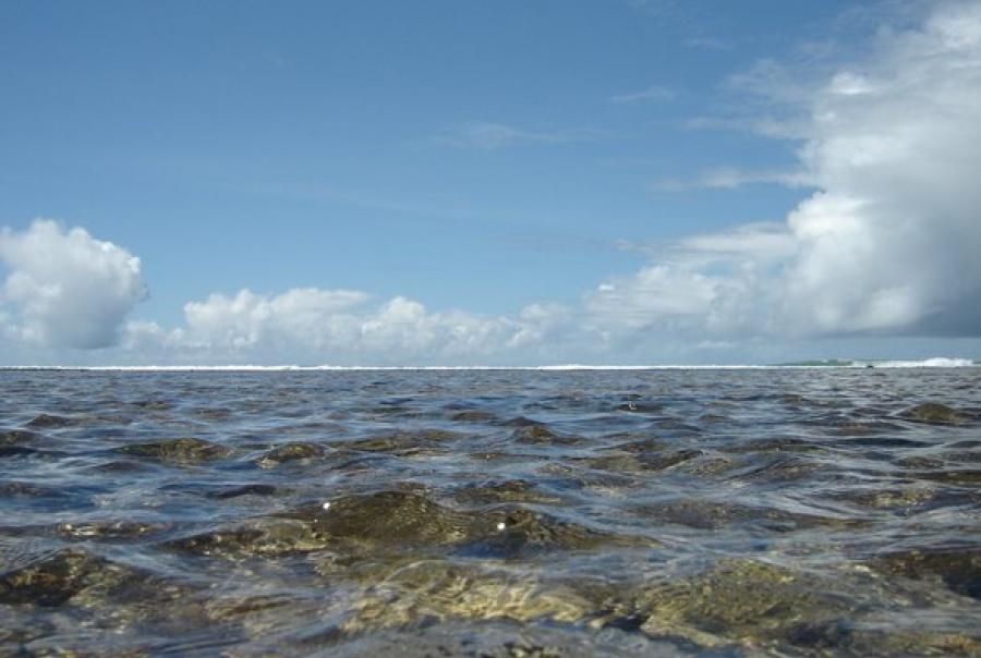 Florida International University Sea Level Center