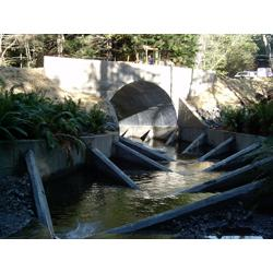 Fish Passage Solutions