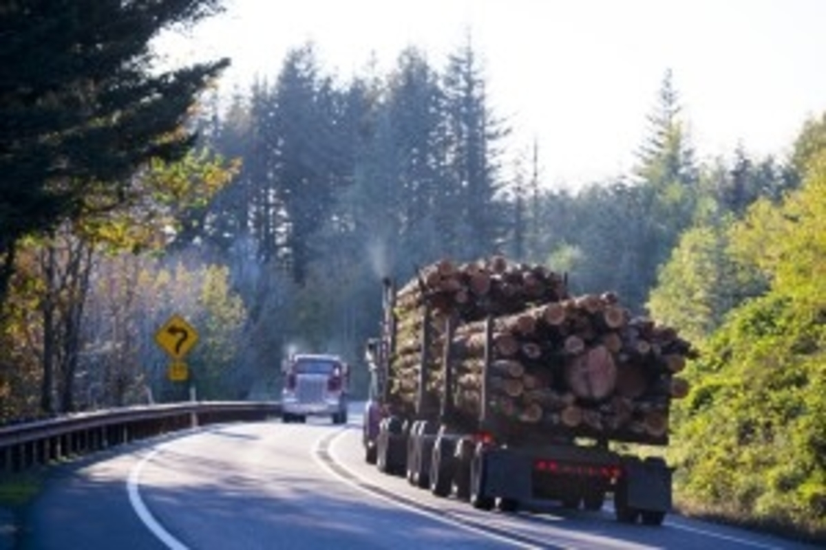 Truck with Lumber on Road
