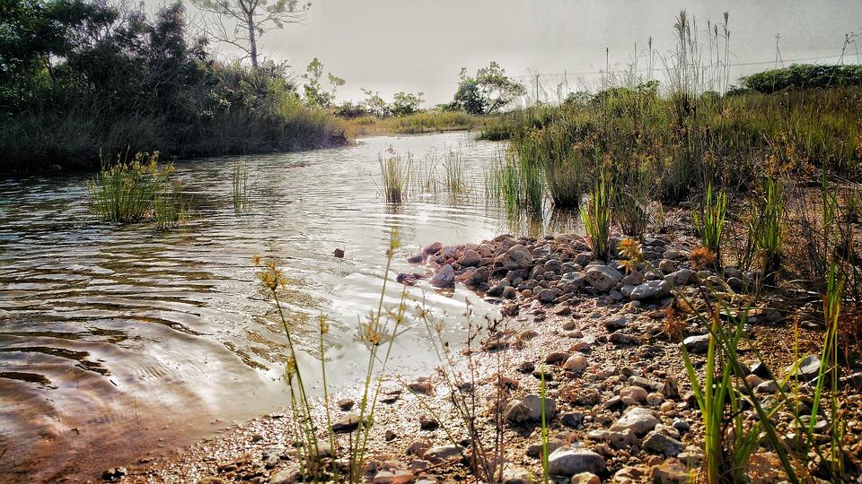 GenX found in rainwater samples