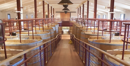 nuwater_winery_fermentation room