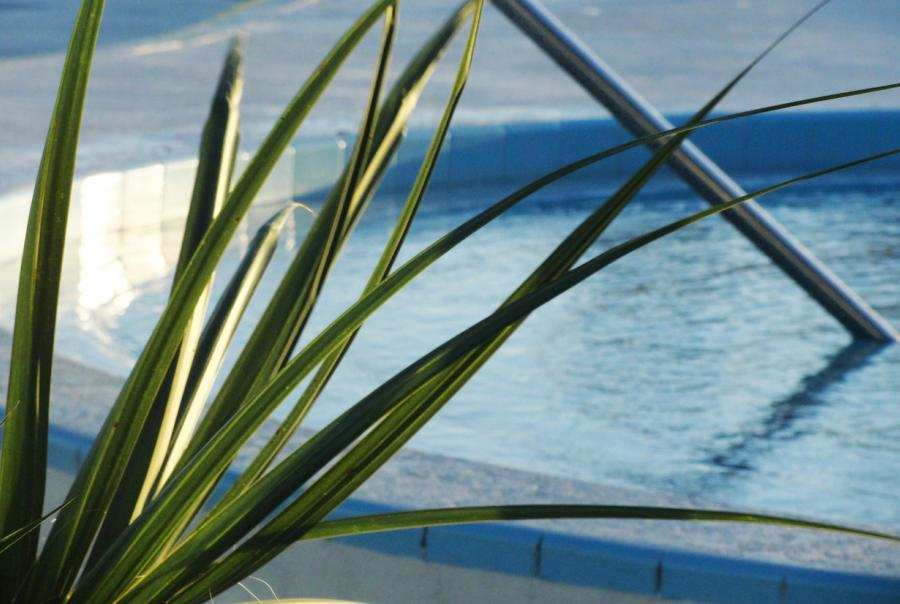 nspf releases new swimming pool and spa operator handbook