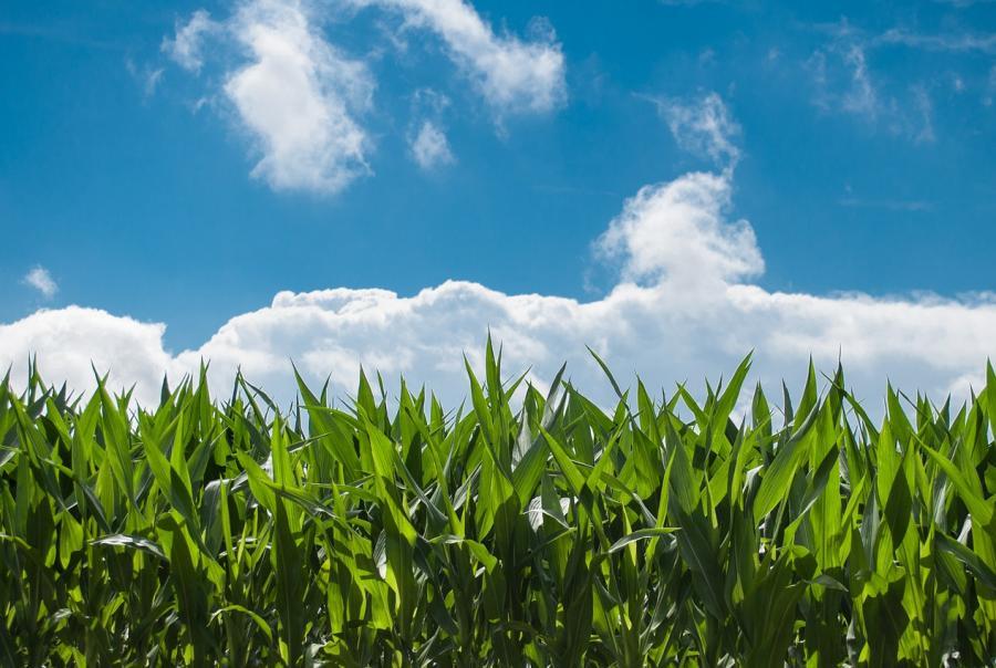 AWWA encourages farm bill legislation