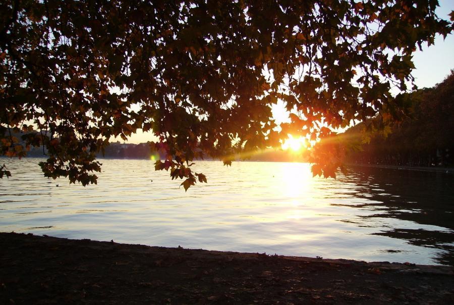 lake owasco, new york, auburn, algal bloom, water, treatment, drinking