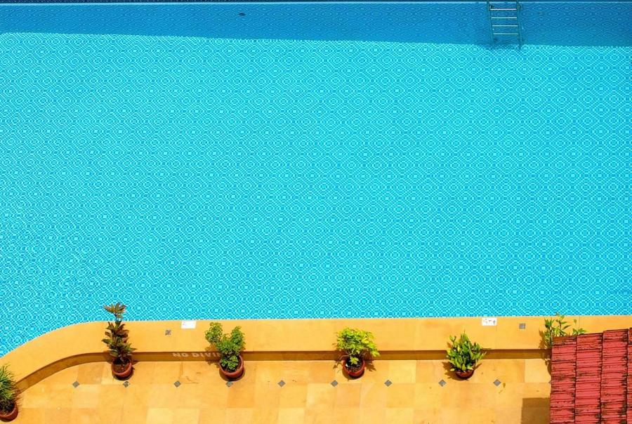 swimming pool foundation update board of directors