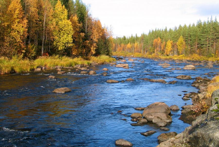 salmon falls river, maine, berwick, drinking water, dirty
