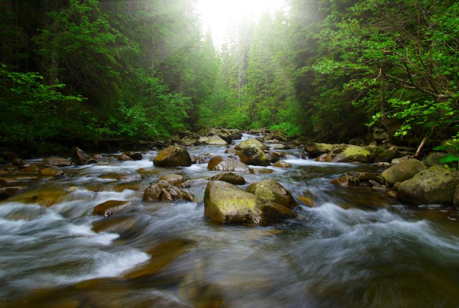 Evaluating the environmental consequences of water products