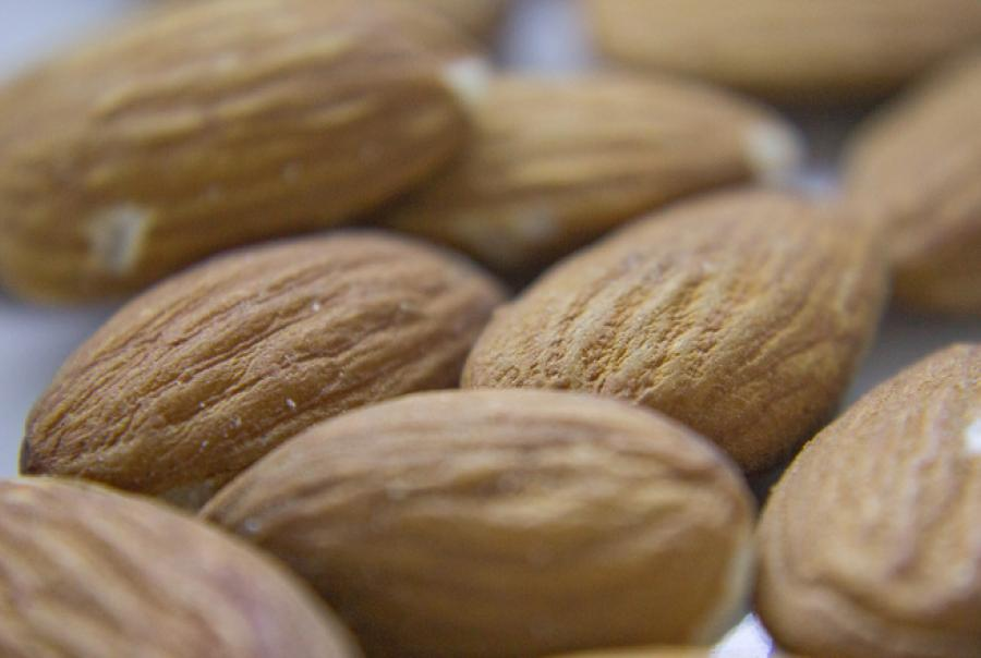 Almond Board of California water efficiency irrigation conservation drought