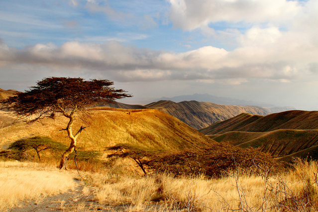 tanzania, african water week, international water association, drought