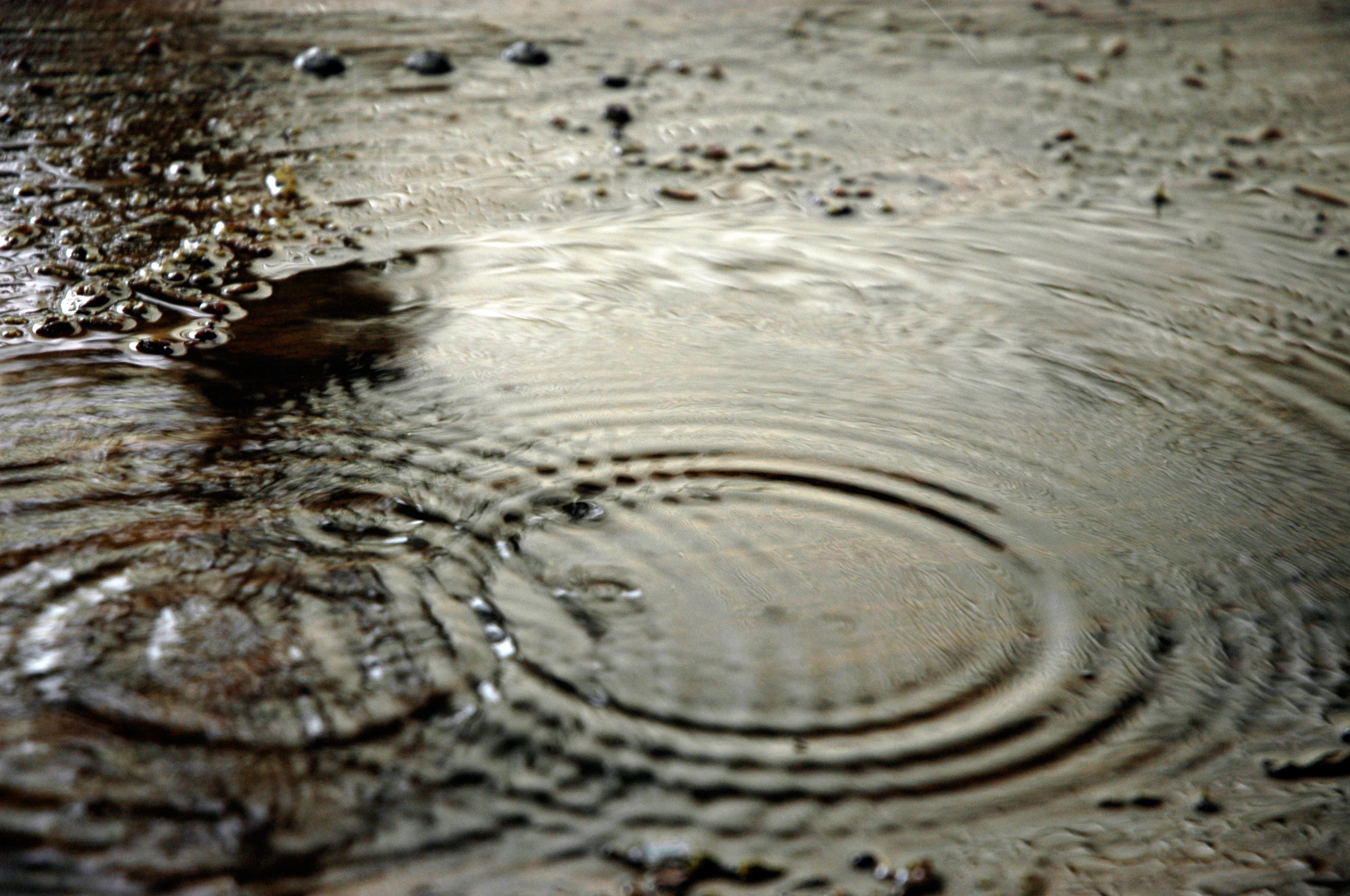 Texas drought Fitch Ratings
