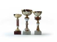 Cityworks Exemplary User Award