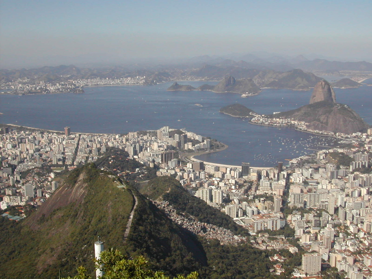 An Unsavory Spectacle in Rio