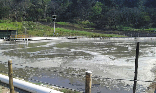 Biological oxygen demand (BOD) in this 1.2 million gal lagoon is reduced with venturi injectors and special nozzles that release aerated water at the bottom of the pond.