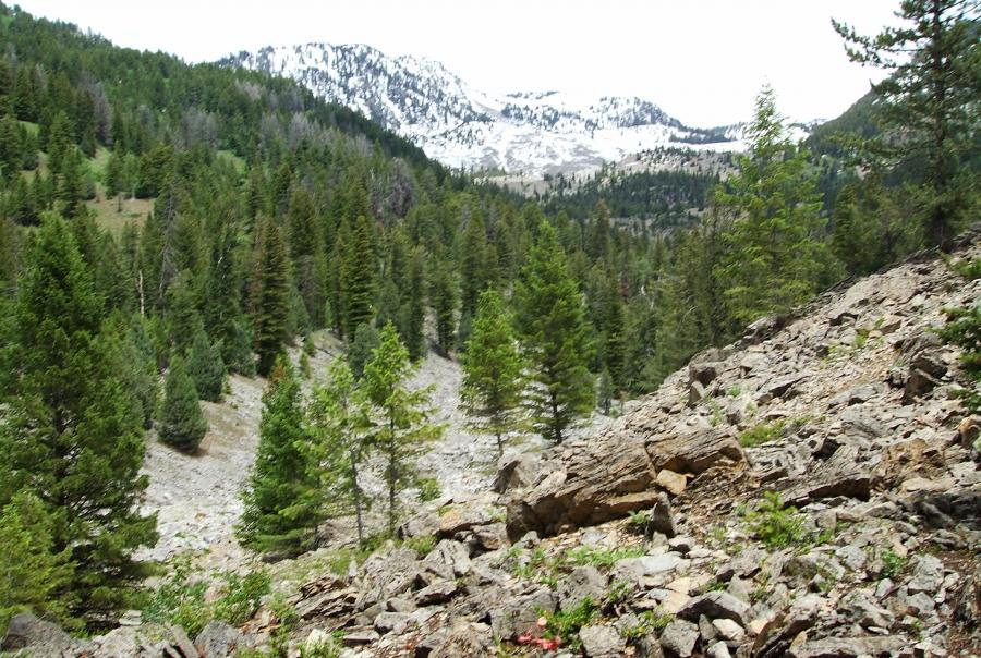 GE Monsal Rexburg Idaho biosolids disposal sludge