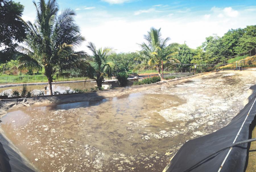 Dewatering sludge in Costa Rica