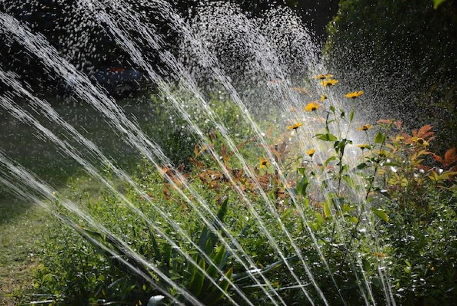 A plan is underway in Milton, Del., to use spray irrigation to dispose of treated wastewater