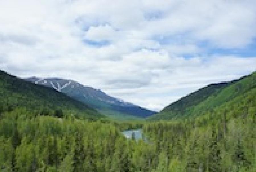 GE Alaska reverse osmosis Golden Valley Electric Association