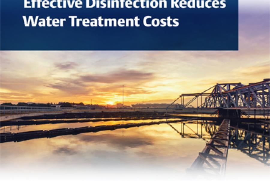 Improved Chlorine Analysis for Effective Disinfection Reduces Water Treatment Costs