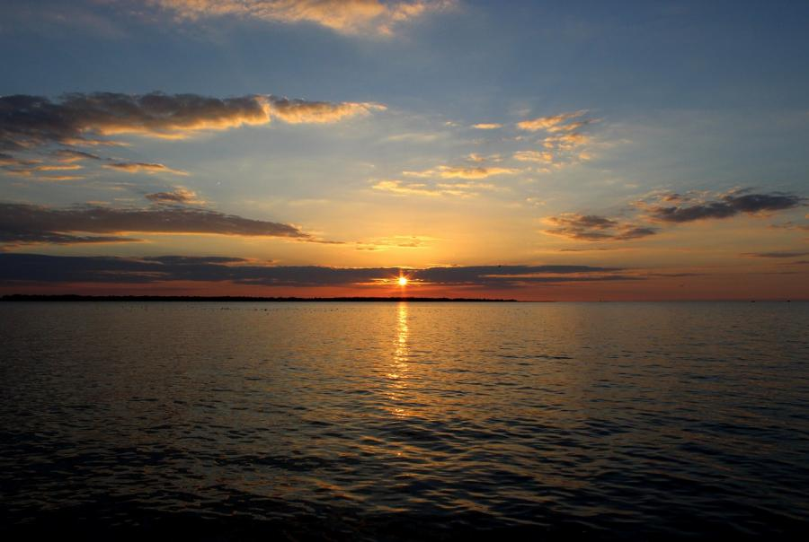 Lake Erie may experience worsening algal blooms