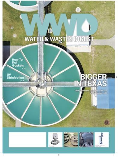WWD June 2018