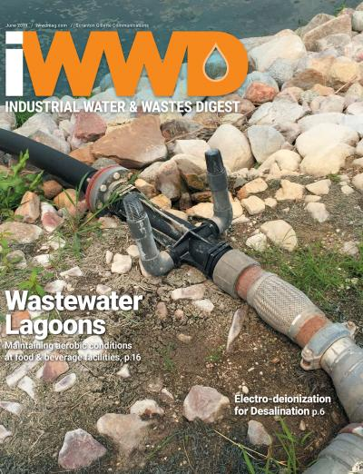 iWWD June 2019 cover